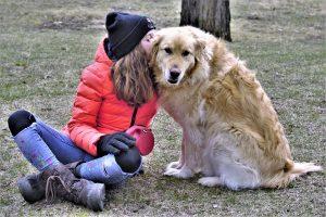 er en hund en god gaveide?